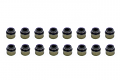 Valve Stem Seal Kit FSI/TSI
