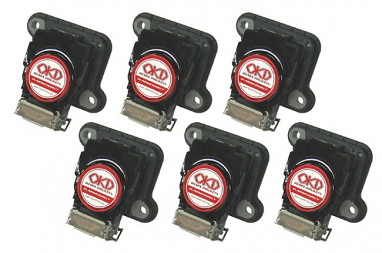 Ignition Projects By OKD: Plasma Direct Ignition Coils For 2.7T