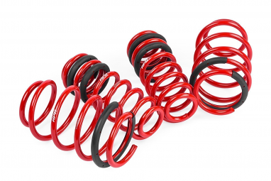 APR Roll-Control Lowering Springs For VW GTI MK7