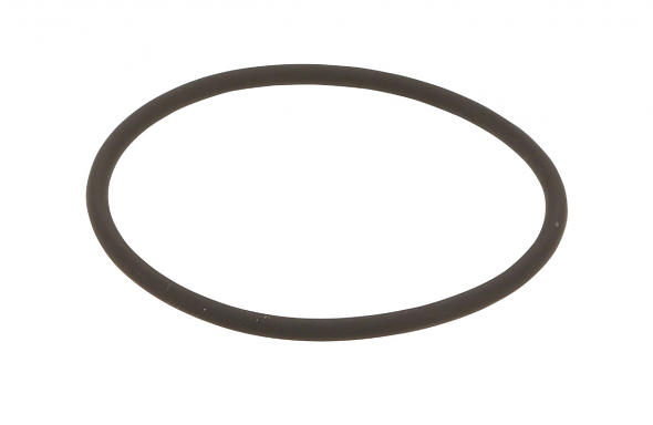 Camshaft Adjuster Magnet Seal O-Ring