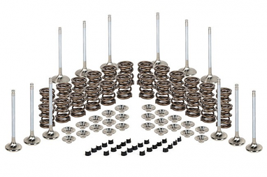 Valvetrain Kit- Stock Size Valves For Ferrea VR6 12v 2.8L