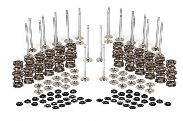 Valvetrain Kit- Stock Size Valves For Ferrea VR6 3.2L