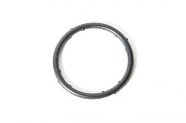 Coolant Flange O-Ring